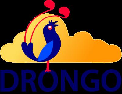 Drongo festival hét evenement voor taalliefhebbers