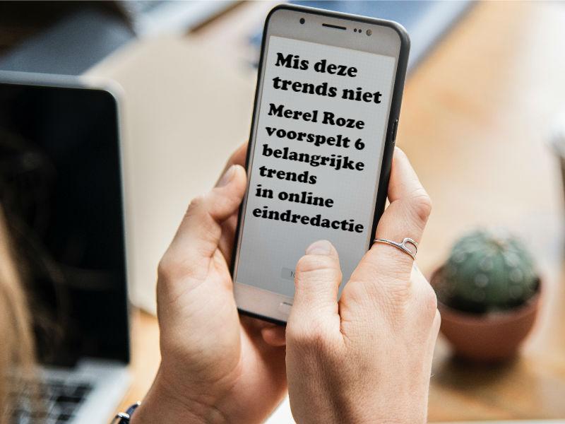 Schrijftrainer Roze voorspelt 6 trends in online eindredactie